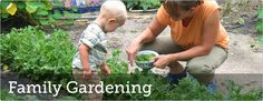 Family Gardening Activities!Growing an edible family garden is a great way to get your kids excited about eating fresh fruits and vegetables. It also provides a terrific opportunity to give back to your community.