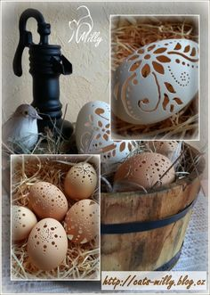 velikonoce Eggs, Food, Essen, Egg, Meals, Yemek, Egg As Food, Eten