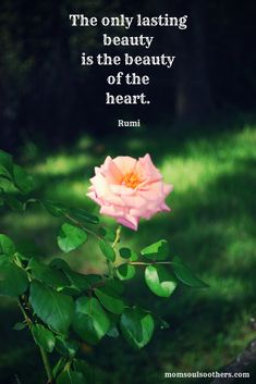 Soul Friend: the Sacred Space of Silence beauty + heart = Rumi Rumi Quotes, Soul Quotes, Bible Verses Quotes, Wisdom Quotes, Words Quotes, Positive Quotes, Life Quotes, Inspirational Quotes, Peace Quotes