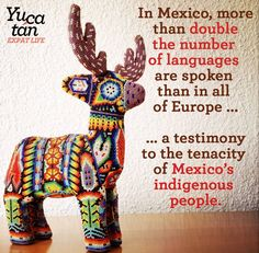 possibly twice as many languages in Mexico as in Europe