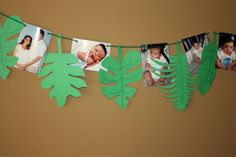 1st birthday king of the jungle lion birthday month to month picture banner