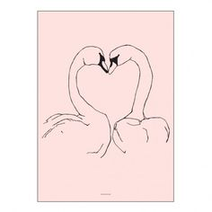 Pax & Hart Sunday Love Birds