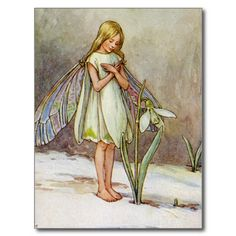 The Snow Drop Fairy Postcards