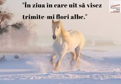 How to paint a White HORSE running in the snow Acrylic Painting for Beginners Step by Step Part 1
