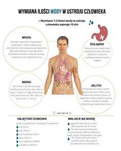 Ile wody tak naprawdę należy wypijać w ciągu dnia? - Motywator Dietetyczny Healthy Eating, Wellness, Diet, Eating Healthy, Eating Well, Clean Eating, Eating Clean, Healthy Diet Tips, Healthy Foods