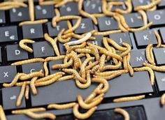 The 12 Greatest Computer Hacks in History: The Conficker Worm 2008: Still Infecting a Million Computers a Year