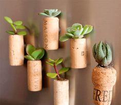 Com essas dicas você vai conseguir começar o seu próprio jardim. É simples e fácil!