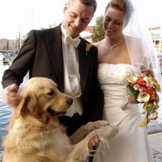 "Saying ""I Do""…to Having Your Dog in Your Wedding #dogs #dog"