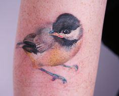 chickadee tattoo by amanda wachob...let's just say it's a little incentive :)