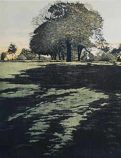 Dusk Shade by Phil Greenwood RE, Etching at Norton Way Gallery Hertfordshire