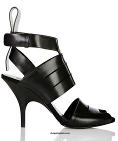 Google Image Result for http://shoppingdam.com/wp-content/uploads/2012/03/Alexander-Wang-Heels-Shoes-Spring-2012-1.jpg