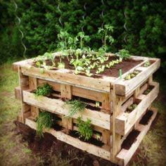 Die 80 Besten Bilder Von Garten Ideen Paletten Palette Garden