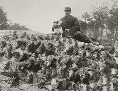 A ratcatcher with his catch from the trenches/1916