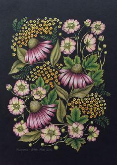 Coloured by Morena Vajak #prismacolor #roses #blomstermandala #mariatrolle…