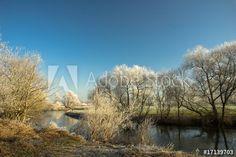 Winterimpressionen, Flussufer mit Raureif