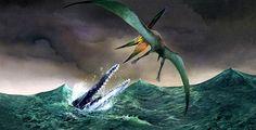 John Bindon Polycotylus & Pteranodon
