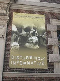 mutter museum of medical curiosities, philadelphia, pa  (Always wanted to go here!)