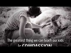 Teachkind's Humane Education Webinar