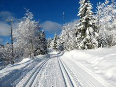 So beautiful winter time!! - Review of Nordmarka, Oslo, Norway - TripAdvisor