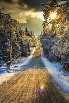Snowy Road, Ontario, Canada