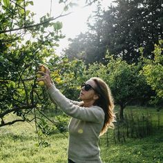 Zurück im Sonnenlicht befördern uns die alten Olivenhaine und Zitronengärten wieder in die Gegenwart. Vor ein paar Stunden hatten wir noch das Olivenöl, die Oliven und die Zitronen von hier in Mondello gegessen. Eine Verabredung mit der sizilianischen Küche