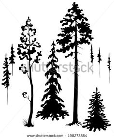 Coniferous trees silhouettes set.