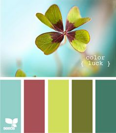love the color scheme- by design seeds