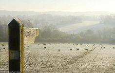 Sheep graze on a field near Alresford, Hampshire that was covered in frost today.