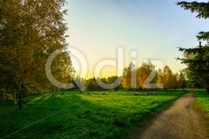 Qdiz Stock Photos | Autumn Landscape in City Park with Path,  #autumn #background #bench #branch #City #colorful #day #distance #environment #foliage #footpath #golden #grass #green #ground #landscape #leading #leaf #leaves #lush #meadow #multicolored #nature #nobody #outdoor #park #path #pathway #road #scenery #season #sky #sunlight #tranquil #tree #walkway #way #wood #yellow