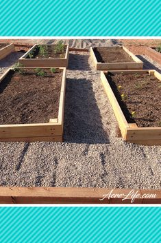 These are easy to build and will last a long time. raised beds made out of cedar are a great way to garden without dealing with grass and weeds.