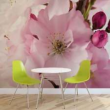 WALL MURAL PHOTO WALLPAPER XXL Flowers Blossoms Nature Pink (8-020WS)