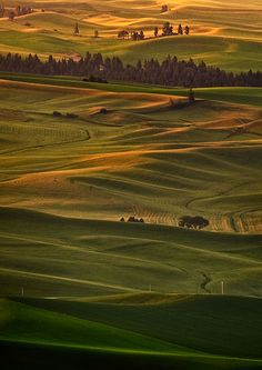 Early Morning Over the Palouse