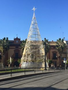 Seville Christmas tree