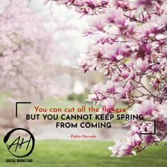 You Can Cut All The Flowers But you Cannot Keep Spring From Coming - Pablo Neruda Social Media Marketing Manager, Social Media Services, New Things To Learn, Cool Things To Buy, Ibiza Party, Diy Yard Games, Summer Body Goals, Free Facebook Likes, Get Gift Cards