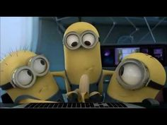 Despicable me Banana- this video is hilarious! I love the minions! Amor Minions, Minion S, Minion Banana, Minions Love, Minion Humor, Minions Quotes, Banana Song, Despicable Me, Laughing So Hard