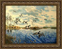 Lake Okeechobee Framed Print featuring the painting Lake Okeechobee-ring-neck…