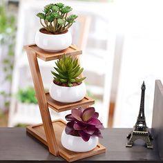 Set of 3 White Ceramic Round Succulent Planter Pot with 3... https://www.amazon.com/dp/B01N4PY4GQ/ref=cm_sw_r_pi_awdb_x_XBzlzbEAW0NEC
