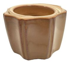 Octagon Self Watering Glazed Ceramic Pot - Mocha (Brown) - 5 x 4 House Plants For Sale, Plants For Sale Online, House Plant Delivery, Asparagus Fern, Pot Lights, Fruit Seeds, Self Watering Planter, Mocha Brown, Planting Bulbs