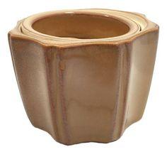 Octagon Self Watering Glazed Ceramic Pot - Mocha (Brown) - 5 x 4 House Plants For Sale, Plants For Sale Online, House Plant Delivery, Asparagus Fern, Pot Lights, Self Watering Planter, Mocha Brown, Planting Bulbs, Edible Garden