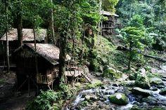 Je eigen hutje midden in de jungle, Maleisië. Door communitylid ahout - NG ReisCommunity ©