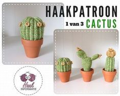 Haakpatroon cactus 1 van 3. Dit is een patroon van een cactus bestaande uit een set van 3 gehaakte cactussen. Wil jij ook cactussen haken? Op Haakinformatie vind je het patroon.