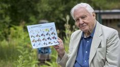 Sir David Attenborough backs world's biggest butterfly count. July 2018.
