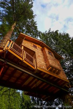 Charlie's Treehouse at Treehouse Resort and Spa — Nelson Treehouse Beautiful Tree Houses, Cool Tree Houses, Luxury Tree Houses, Mountain Dream Homes, Tree House Plans, Building A Treehouse, Tree House Designs, Gate House, Tiny House Cabin