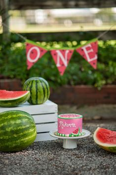 Watermelon cake smash   The Frosted Petticoat