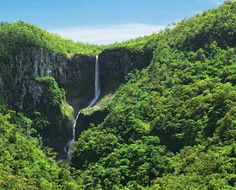 Frederica Nature Reserve, part of the Domaine de Bel-Ombre, home of Heritage Resorts, south of Mauritius.