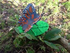 Astrids sommerfugl