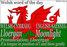 Welsh word of the day: Lloergan/Moonlight Learn Welsh, Welsh Words, Welsh Sayings, Welsh Phrases, Welsh Language, Language Lessons, Language Arts, Thinking Day, Cymru