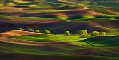 The Palouse is one of the most beautiful places in the world.