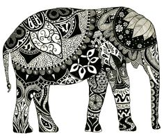 elephant, black and white, obsessed
