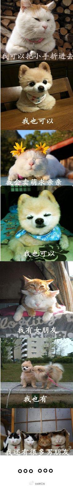 Cute pets!!